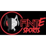 Ant E sports